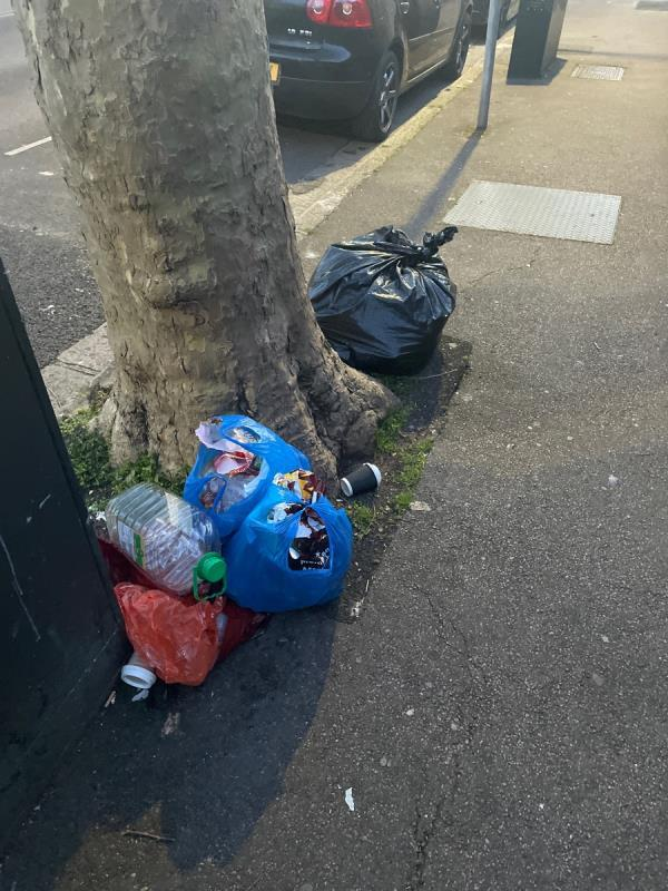 Rubbish  image 1-23 Essex Road, Manor Park, E12 6RF