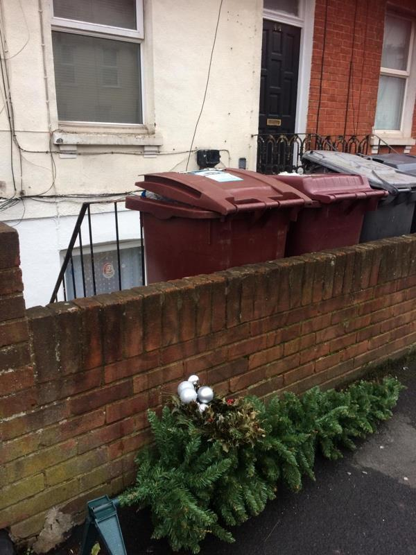 A plastic Christmas tree that belongs to the basement resident of 44 Zinzan St. I had local residents advised me that it was placed out there from that flat. cllr Karen Rowland-50 Zinzan Street, Reading, RG1 7UG