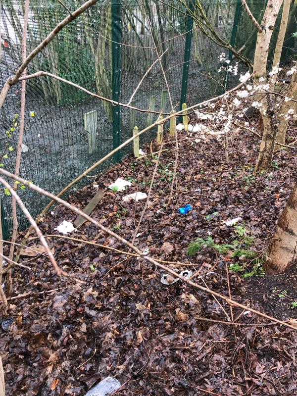 Litter problem along border between ring road and school. There is litter all the way along the school boundary, on both sides of the footpath & in the ditch. It has been like this for months.-559 Palmerston Way, Leicester LE2 3YA, UK