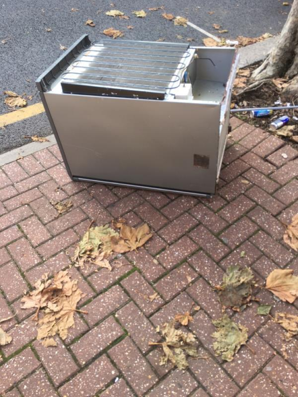 Rubbish dumped, fridge leaking -107a Rutland Road, London, E7 8PQ