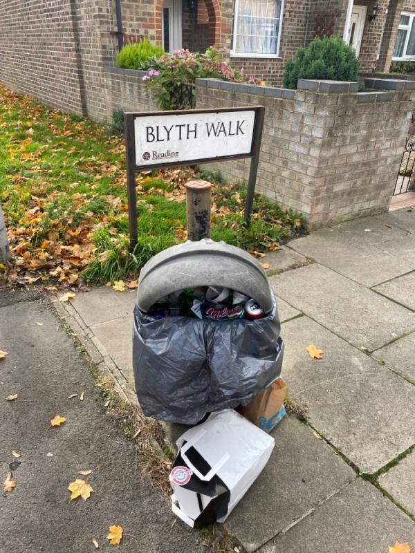 Overflown bin-1 Blyth Walk, Reading, RG2 0AF