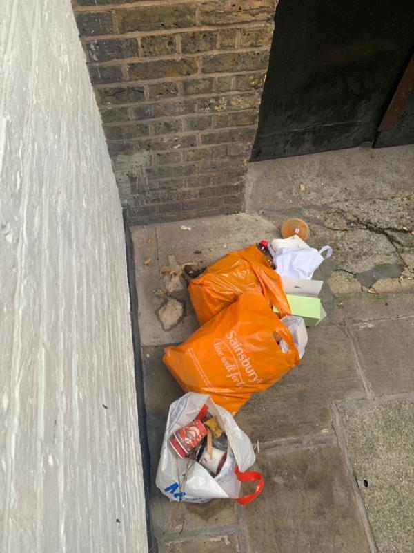 Careier bags full of waste and faeces. -St. Anns Vestry Hall, 2 Church Entry, London, EC4V 5EP