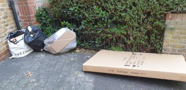 2 bags and one large cardboard box-22 Elmgreen Close, London, E15 4BS