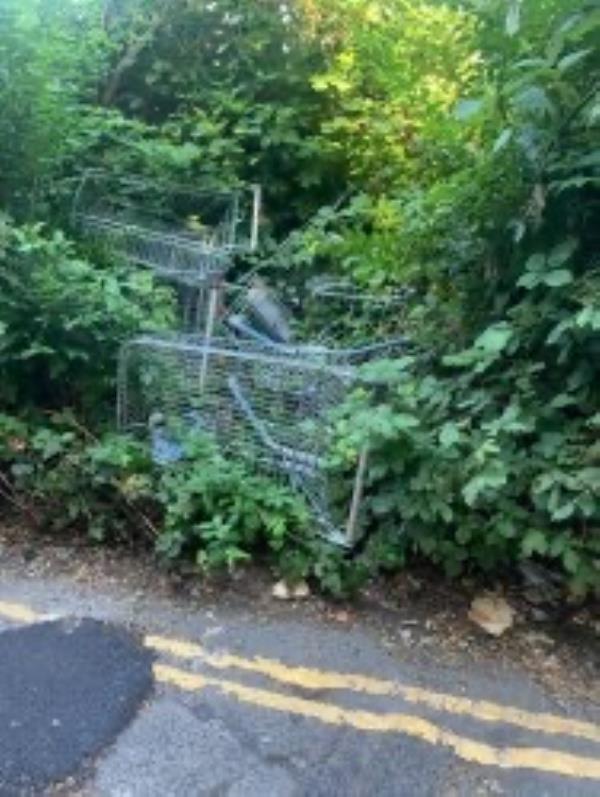 Please clear flytip of trolleys-7 Berryman's Lane, London, SE26 4JH