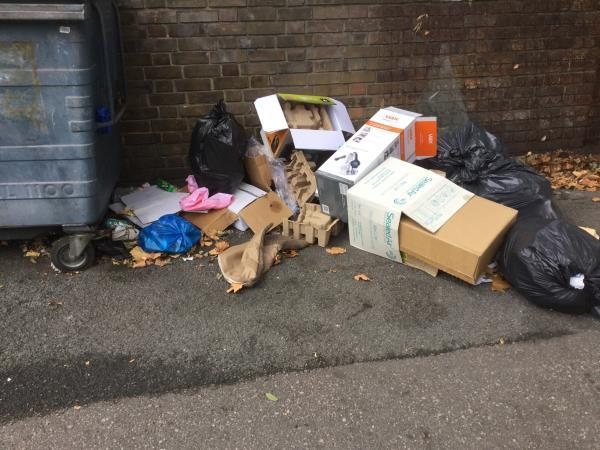 Near recycling bank -32 Stondon Walk, East Ham, London E6 1LZ, UK