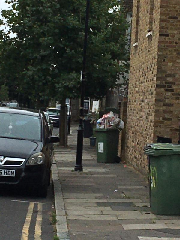 Abandoned green bin over flowing with non-green waste.-78 Cranbrook Road, London, SE8 4EJ