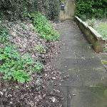 SEESL from NP Zone2 EBC 14th Feb 2020 12pm please could you sweep the paths in front of 230-240 and to the side of 230 Willingdon Rd they are very slippery.   Thank you  Neil -234 Willingdon Road, Eastbourne, BN21 1XS