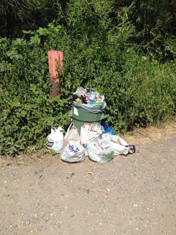 Bin overflowing in Circuit Lane by the railway bridge!!-4 Stapleford Rd, Reading RG30 3ED, UK