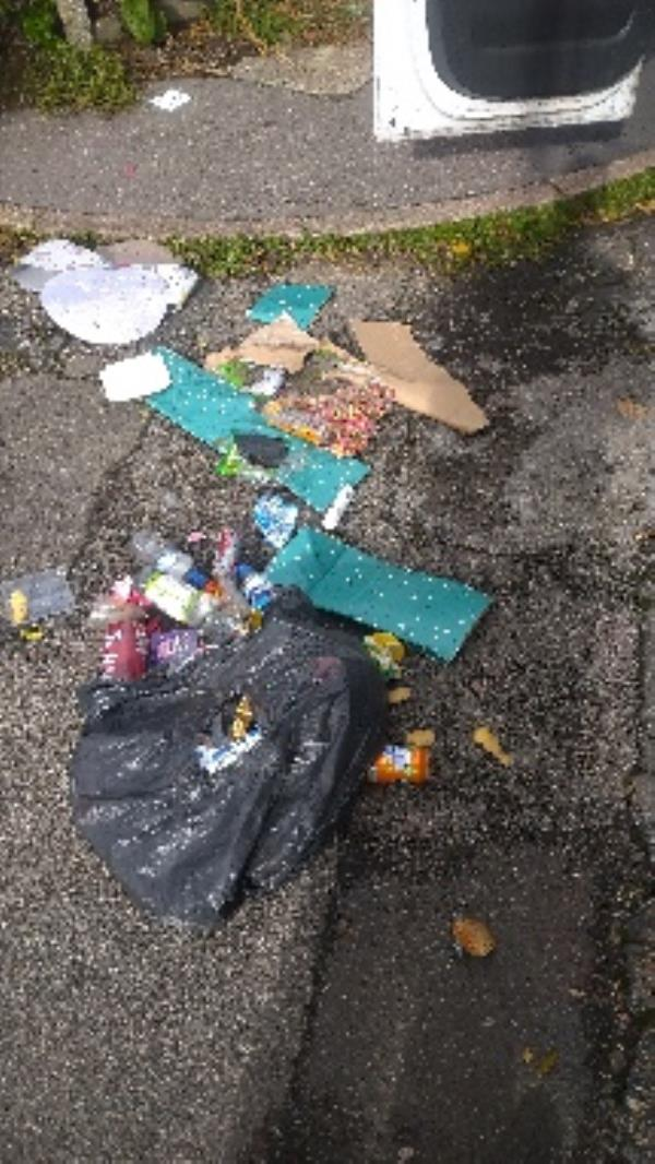 Flytipped household waste bags no evidence taken area cleaned -42 Linden Road, Reading, RG2 7EH
