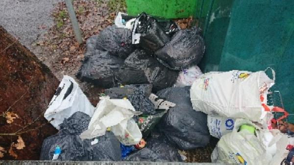 House old waste needs to be investigated before removal possible evidence? -125 Cranbury Road, Reading, RG30 2TD