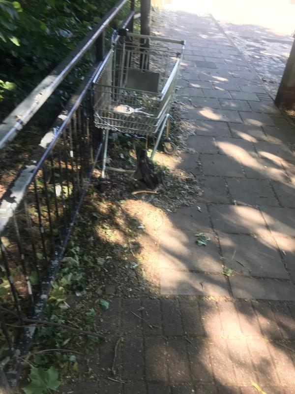 Abandoned shopping trolley left on the path-59 Richard House Drive, London, E16 3RE