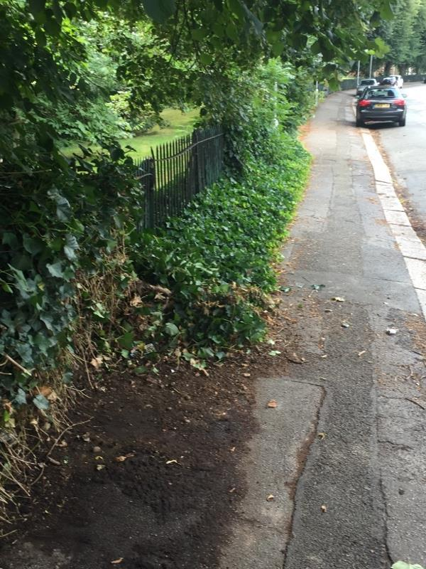 Trip hazard on pavement, ivy encroachment on to the walkway, partly cleared by outside the Vicarage by contractors but left the section by the park fence, even more hazardous to pedestrians as it juts out suddenly now particularly with limited lighting due to overhanging trees obscuring street lights.-45 St Bartholomews Road, Reading, RG1 3QA