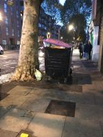 Inadequate waste desposal Lawrence road tree covering pavement -1 Lawrence Yard, London, N15 5AA
