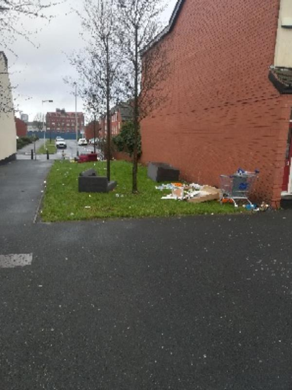 Sofas, bed matress dumped on grass area-42 Adelaide Walk, Wolverhampton, WV2 1DX