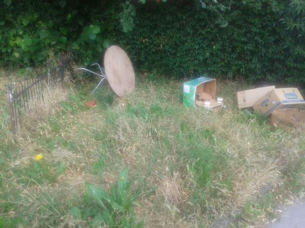 Junction of Shroffold Road. Please clear flytip from corner grass area-151 Oakridge Road, Bromley, BR1 5QQ
