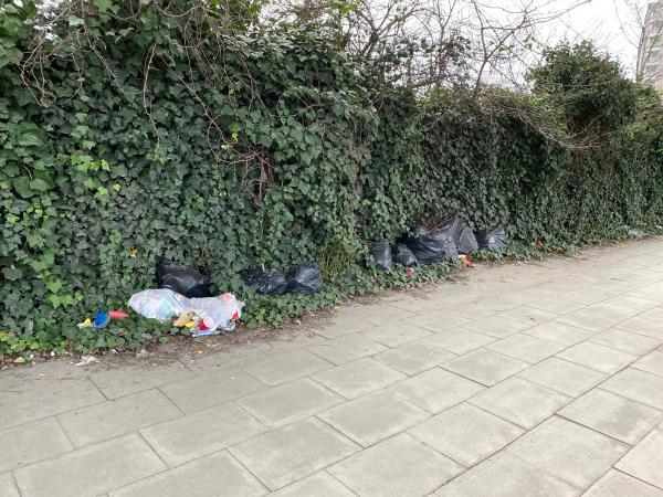 Bags of rubbish left against the fence, under the DLR tracks, opposite BP garage. -Silvertown Service Station, 279-289 North Woolwich Road, London, E16 2BB