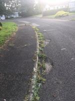 The gutters are badly overgrown and require clearing  image 1-7 Yew Tree Close, Little Budworth, CW6 9BT