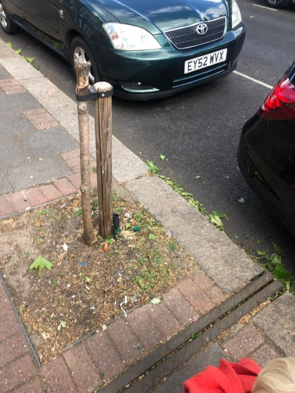 Someone has chopped off two trees on this street. Someone who lives here and probably parks their car here-102 South Esk Road, London, E7 8HD