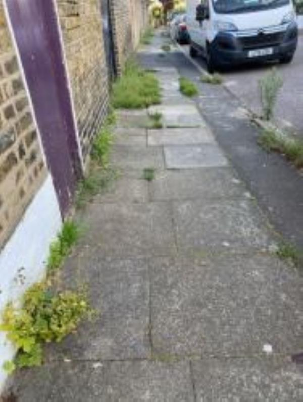 Photo of this report Please can someone spray the weeds in our street that are growing out of every conceivable crevice. It's looking like an abandoned street and is becoming increasing difficult and dangerous with pushchairs and fir people with disabilities. Please do something about this before there is an accident!!!!!. Reported via Fix My Street-1 Aspinall Road, Brockley, SE4 2EH