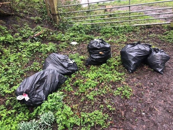 Rubbish dumped again (about 4th time in a week)-12 Nightingale Place, Wolverhampton, WV14 6LZ