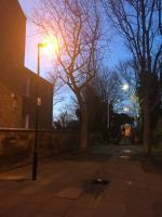 Dull light needs replacing with LED, dark area with graffiti , litter and fly tipping , let there be light please. Dark intimidating area . Located at the beginning of the footbridge  image 1-119b Earlham Grove, London, E7 9AP