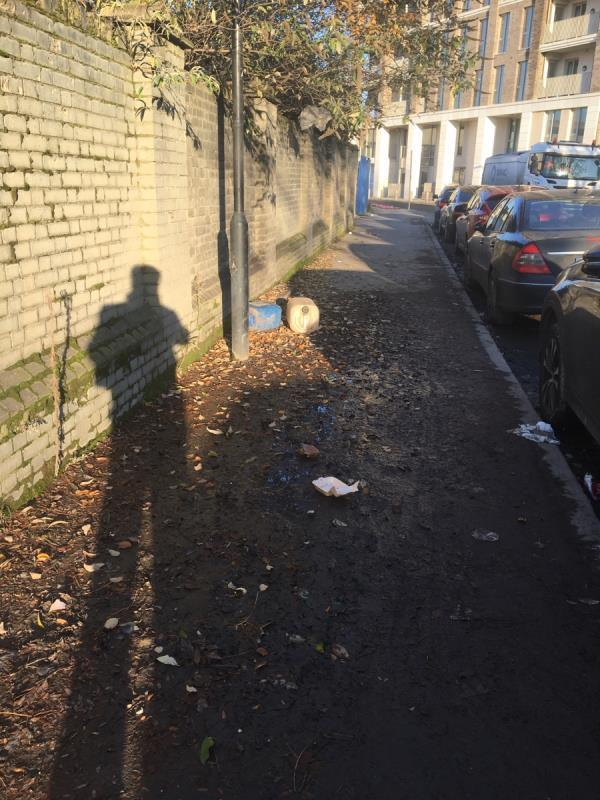 The pavement is filthy and covered in very skippy leaf mulch-5 Knights Road, London, E16 2AT