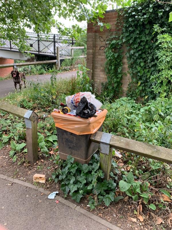 Overflowing bin and litter. Also loads of litter around the bench opposite (as always)-336 Kennet Side, Reading RG1 3EA, UK