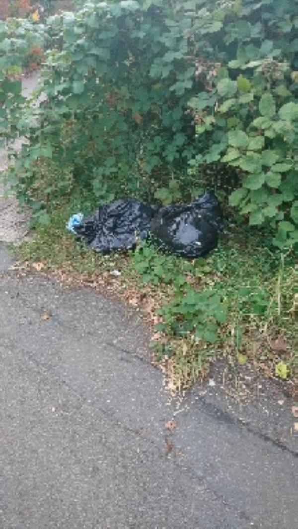 More rubbish dumped near path into park opposite sports centre... 2nd time reported, this is new rubbish. -Braunstone Leisure Centre, Leicester LE3 1LX, UK