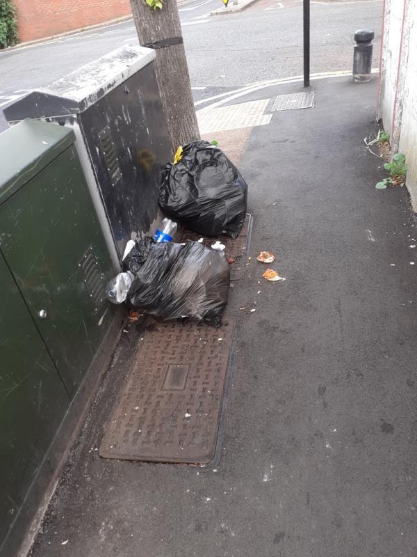 domestic rubbish -7 Rixsen Road, Manor Park, E12 6RN