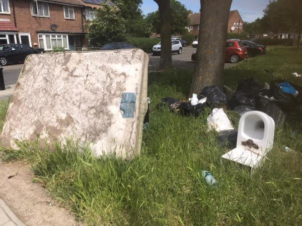 I am resident of 8 Elm Tree Close Ealing council. I am writing inregard dumping rubbish in the green area in front of my house.I have several times tried to stop them or take their picture, they threatened me they say it is non of your business. Could you please take this matter seriously as it's very dangerous for local people health spreading of dangerous Viruses in our area. Kindly install CCTV in my area and take strict action against those you dumping rubbish trespassing etc. Nafisa Sultani-122 Plashet Road, London, E13 0QS