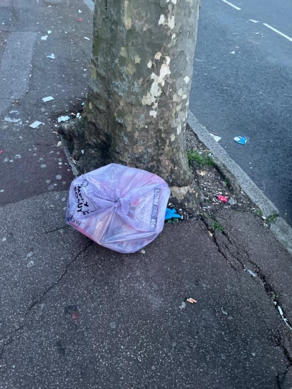 Rubbish  image 2-67 Shelley Avenue, Manor Park, E12 6PX