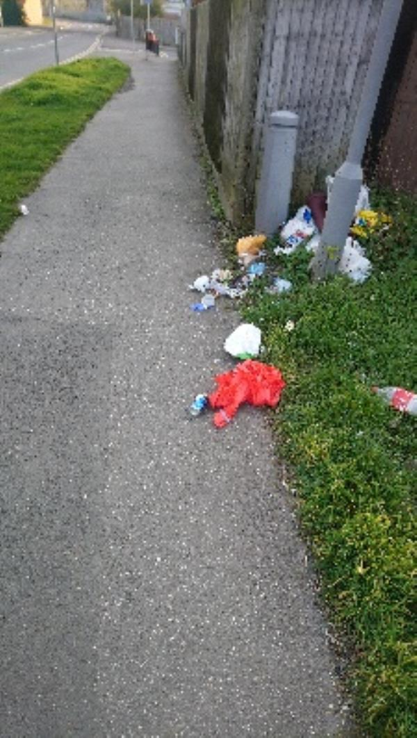 Litter near junction Cow Lane and Beresford Road -97 Salisbury Road, Reading, RG30 1BW