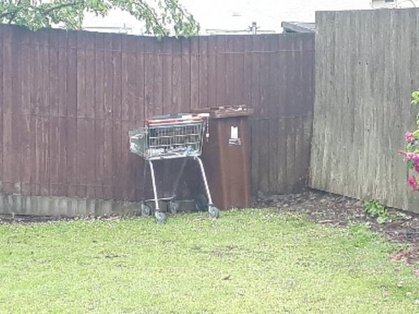 shopping trolley and bin both full of household waste dumped on grassed area burcot ave -24 Burcot Ave, Wolverhampton WV1 2SG, UK