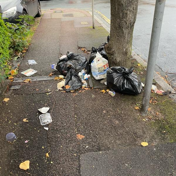 Rubbish probably been left over night and foxes ripped the bags open, hard for the parents with buggies to get past-5 Colchester Ave, London E12 5LF, UK