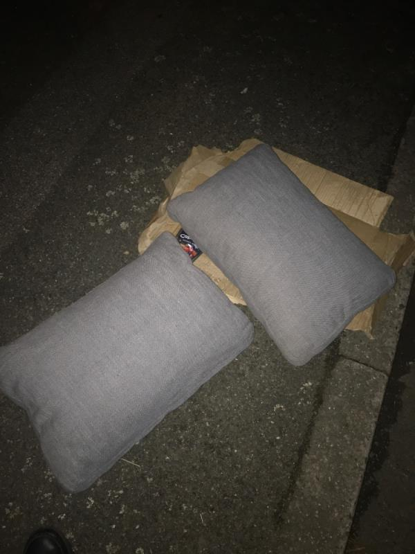 Flytip of box and 2 pillows -23 Nottingham Avenue, Canning Town, E16 3RS