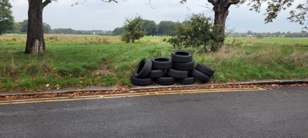 12 tyres fly tipped-76 Capel Rd, London E7 0JR, UK