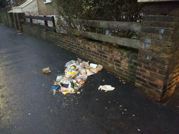 pile of stinking household refuse on pavement-78c Earlham Grove, London, E7 9AR