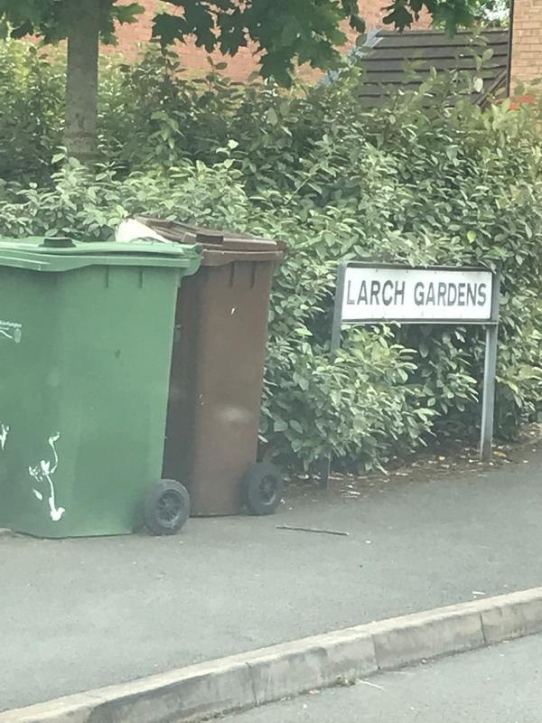 Abandoned bins - public health issue. This is the second report due to ignoring previous request for safe disposal.-21 Larch Gardens, Bilston WV14 0TU, UK