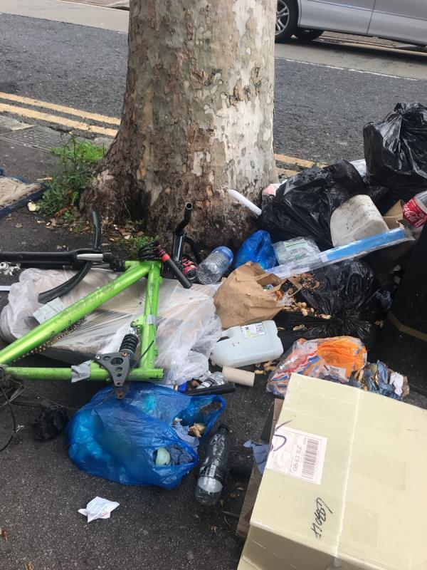 Outside 499 Katherine road. Dumped by bins. Address label clear on one of the items.  image 2-499 Katherine Road, London, E7 8DR