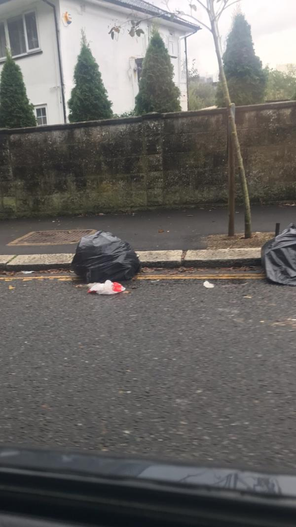 Black bin bags are dumped on the road near 61 Costons Lane Ub6 -59 Costons Lane, Greenford, UB6 8RS