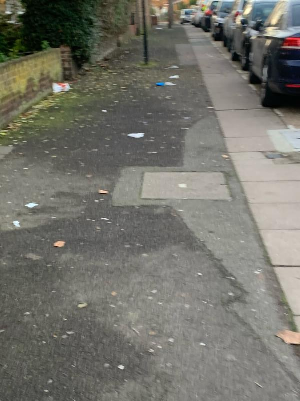 Mess on floor and wood by recycling bin needs clearing up  image 1-2 Kelland Road, London, E13 8DS