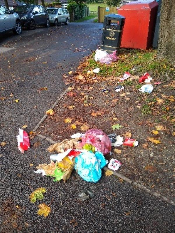 it looks like the bin in the car park has been hit and litter is strewn over the pavement and road-159 Rectory Road, Farnborough, GU14 7HS
