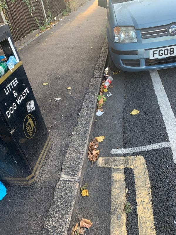 Street bin constantly full and overloaded with rubbish which falls on the road and pavement. -27 Kimberley Rd, London E16 4NT, UK