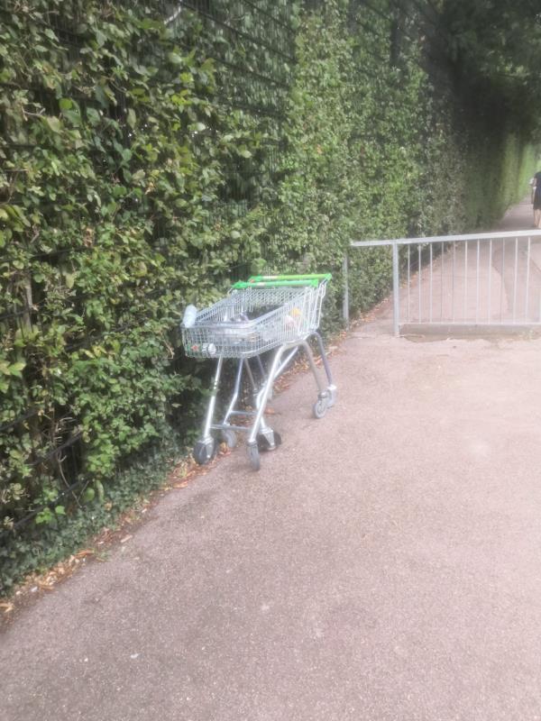 stolen Asda carts-37 Renfrew Close, London, E6 5PQ