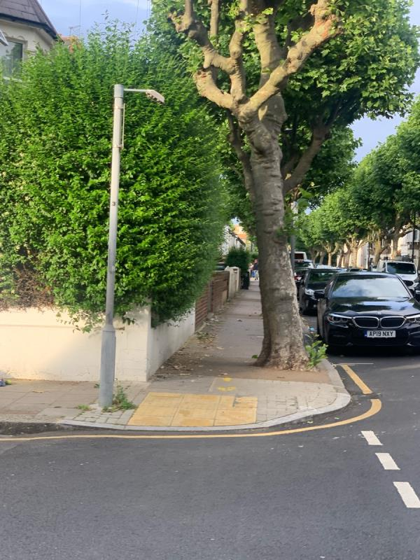These shrubs are overgrown and never maintained by owner. It is the same every year. It's obstructs footpath and dangerous!! I see previous report was just closed off. They needs to be looked at -82 Harold Road, Plaistow, E13 0SG