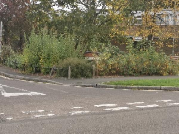 Caswell Close entrance needs to trim bushes and clean please-90 Giffard Drive, Farnborough, GU14 8QD