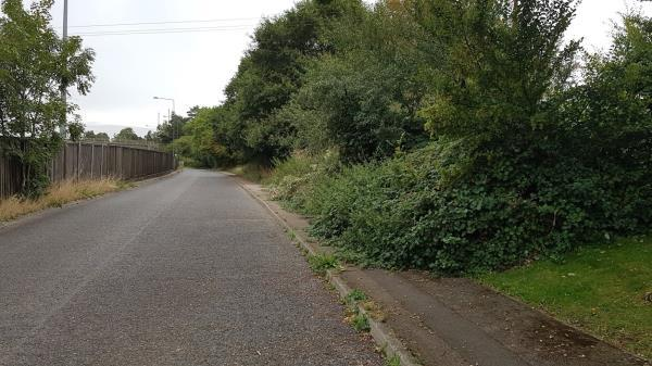 Overgrown Vegetation forcing people to walk in the road. At least one person has slipped and fallen on the pavement due to the surface. Bushes overhanging the road forcing cars to drive on the opposite carriageway. Attention is essential on both sides of the road all the way from the Slough Green Junction to Aniska Nursing home.  image 1-Hazeldene Farm Brighton Road, Warninglid, RH17 5ST