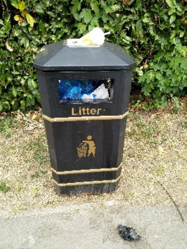 Overflowing bin-68a Saint Michael's Road, Aldershot, GU12 4JJ