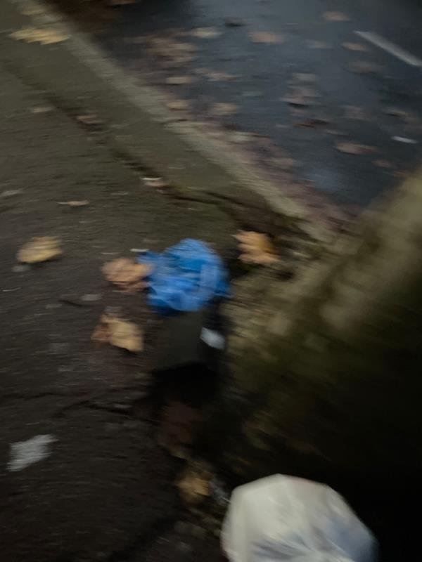 Rubbish  image 2-92 Shelley Ave, London E12 6PU, UK