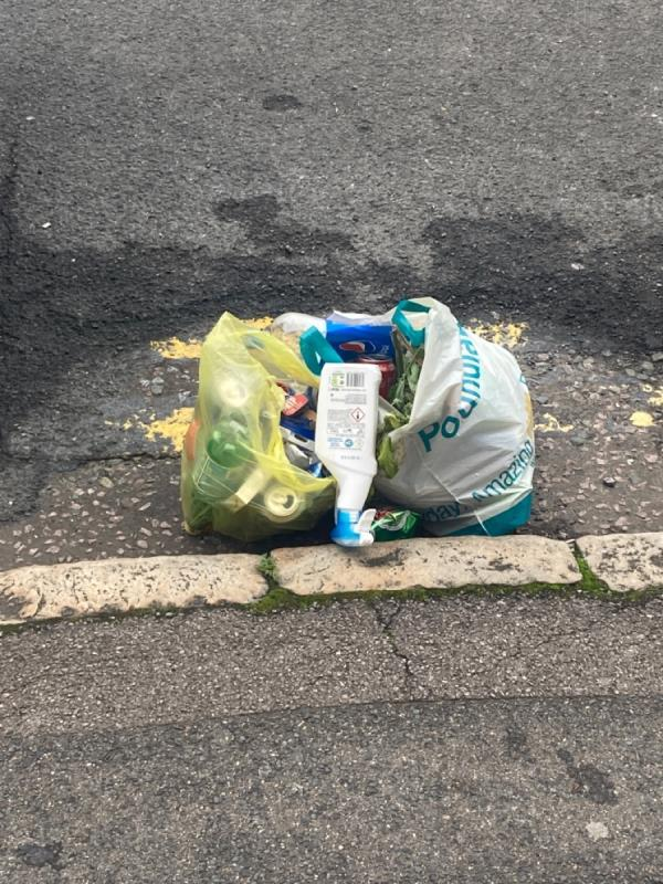 An unknown neighbour is regularly dumping their kitchen bin on the street. -2 Chapel Court South Street, Reading, RG1 4QP